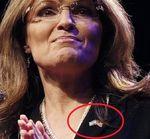 Israel_Flag_Palin