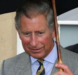 Umbrella_Prince-Charles3